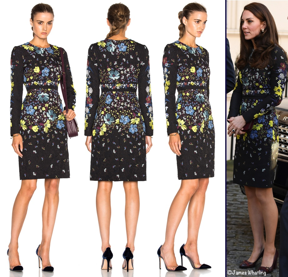 Astonishing Erdem Sale Dresses | Beautiful Erdem Dress