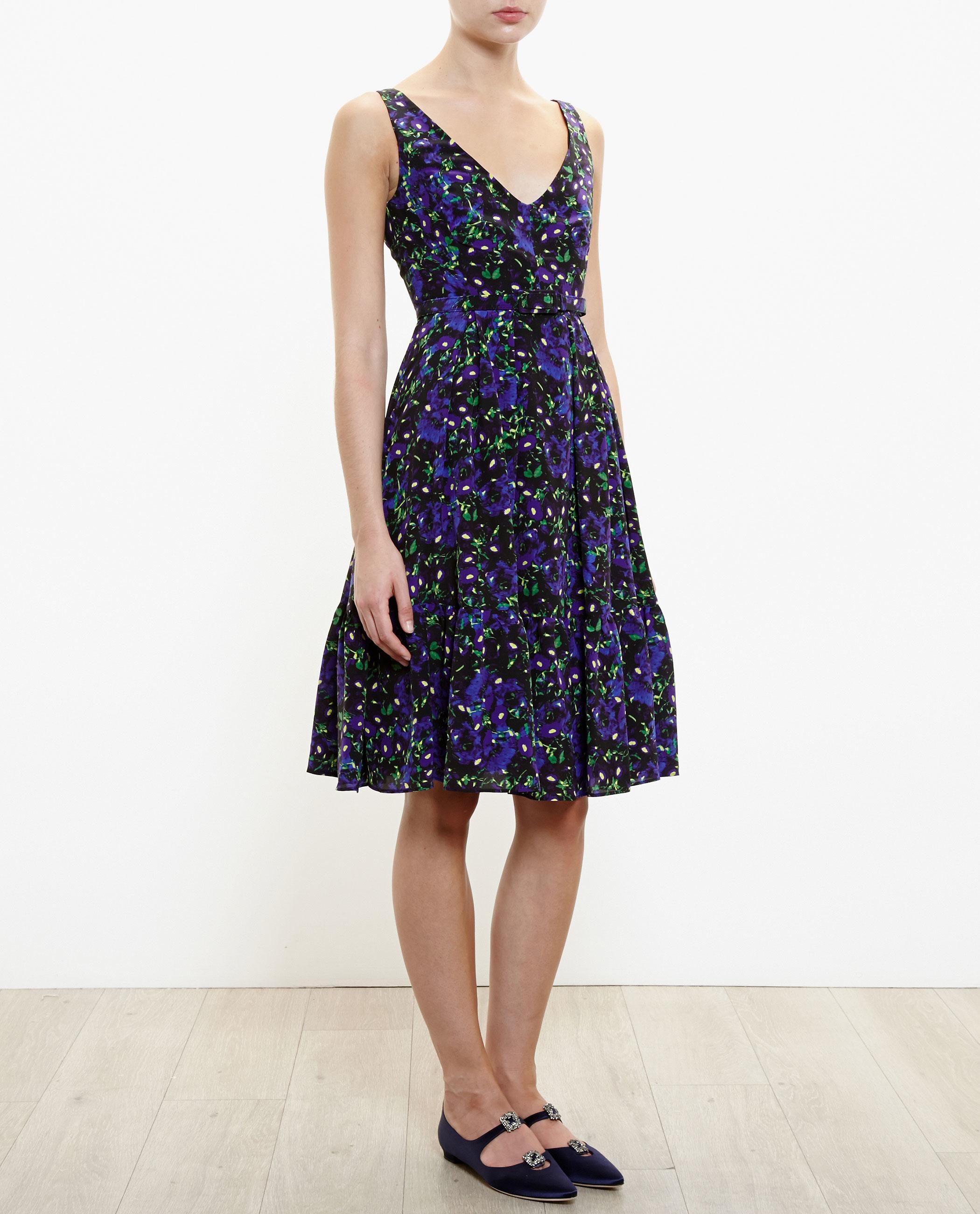 Fresh Erdem Gown | Entrancing Erdem Dress