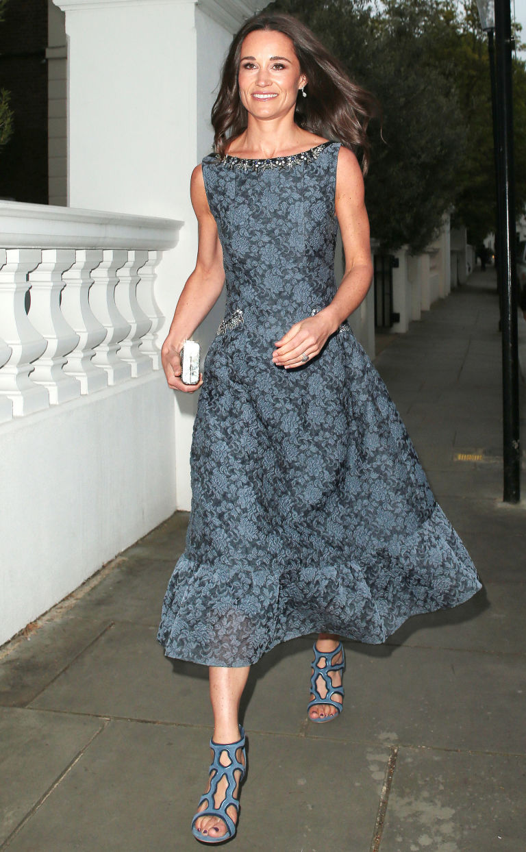 Stunning Erdem Dress | Lovable Erdem Long Dress